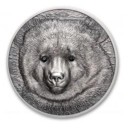 Mongolia Gobi Bear 1 Oz 500 Togrog 2019