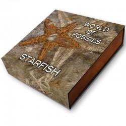 STARFISH WORLD OF FOSSILS 2 DOLLARS 2 OZ NIUE 2019