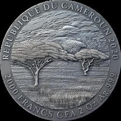 PANTHERA LEO EXPRESSIONS OF WILDLIFE CAMEROON 2020 2 OZ 2000 FRANCS